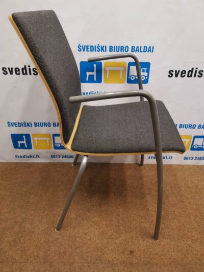 Tamsiai Pilka Lankytojo Kėdė Su Porankiais, Švedija