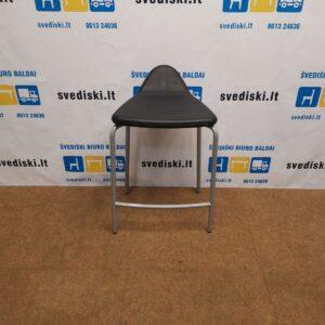 Materia Plektrum Juoda Pusbario Kėdė, Švedija
